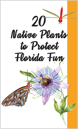 Be Floridian Now Native Plants Brochure